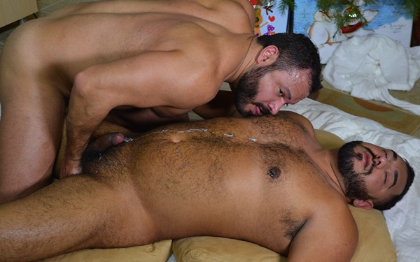theguysite-mario-and-aston-horny-bears